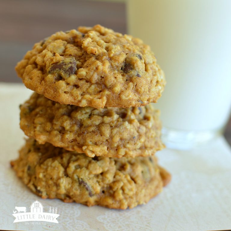 Pumpkin Oatmeal Chocolate Chip Cookies-Best Pumpkin Dessert Recipes
