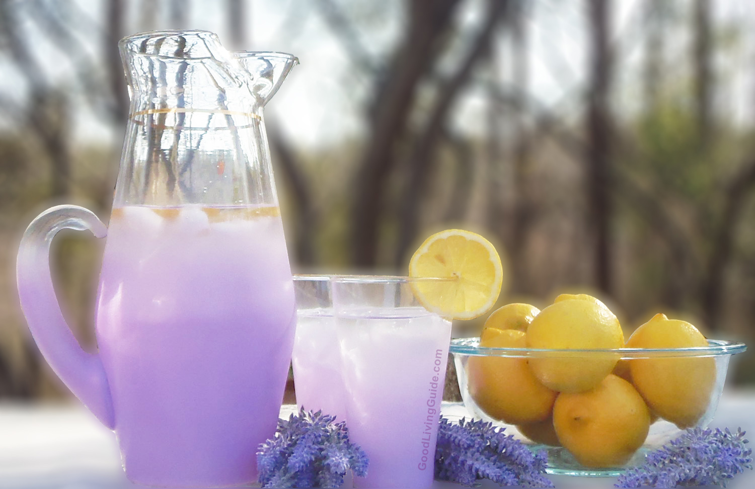 Lavender Lemonade forecasting