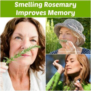 Smelling Rosemary Improves Memory
