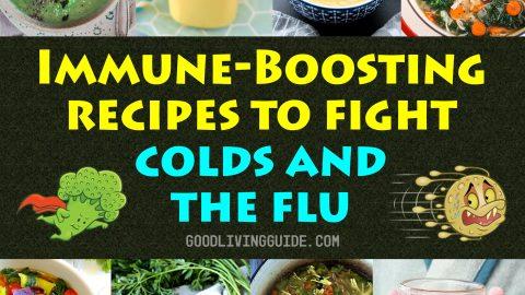 Immune-Boosting Recipes