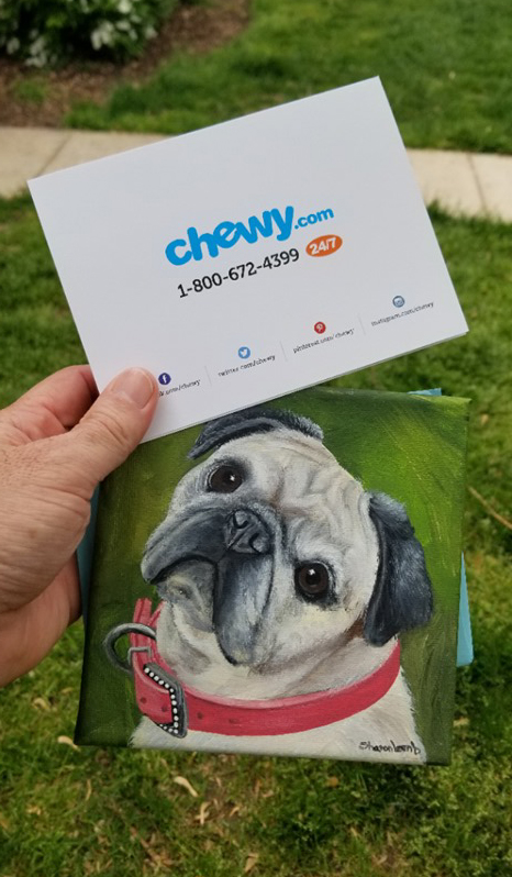 chewy refund dog food