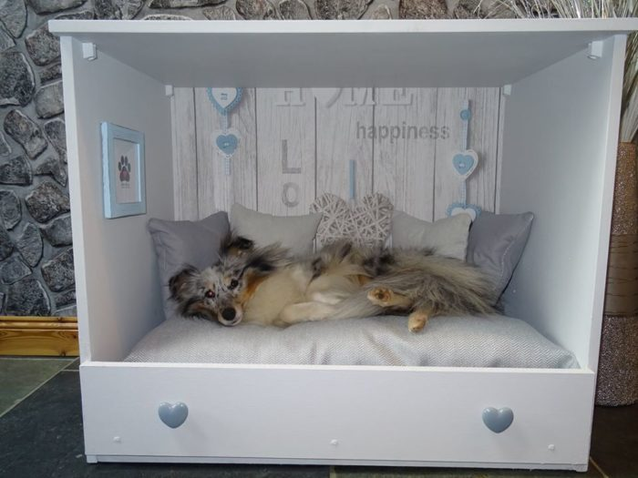 Mother-Daughter Duo Turn Old Dressers Into Personalized Dog Beds