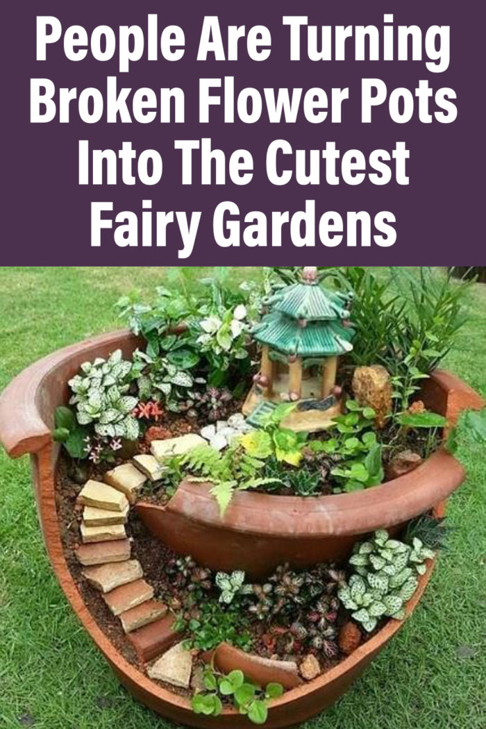 People Are Turning Broken Flower Pots Into The Cutest Fairy Gardens