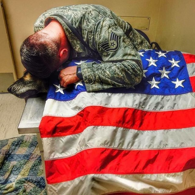 Airman Says Tearful Goodbye To K9 Who Kept American Soldiers Safe