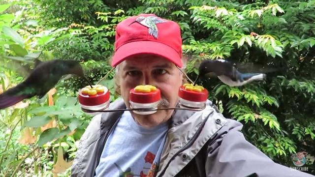 Hummingbird Feeder Hat