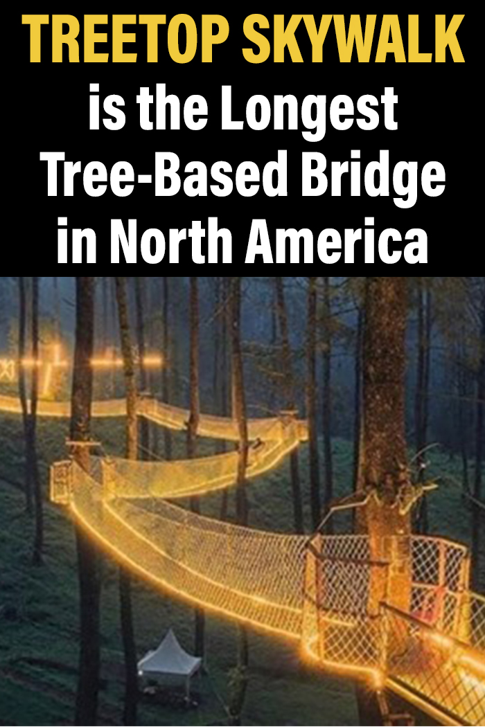 Treetop Skywalk