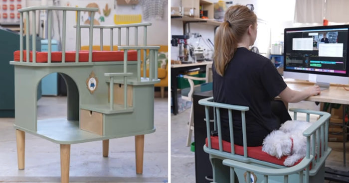 Creative Woman Designs A Chair For Needy Pets